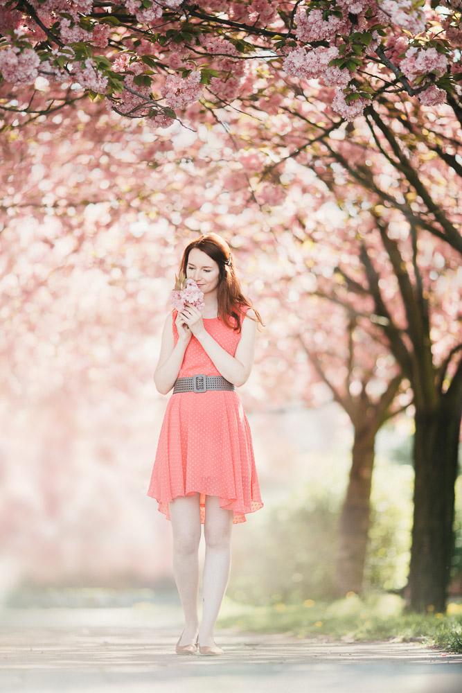 fotka dívky v sakurách